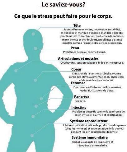 Twitter / MumInCasa: Ce que le stress fait au corps. ... | Process COM | Scoop.it