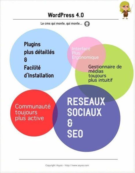 WordPress : le CMS qui monte, qui monte ! | François MAGNAN  Formateur Consultant | Scoop.it