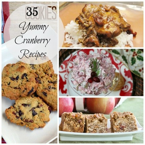 35 Yummy Cranberry Recipes - Sisters Saving Cents | Award Winning Recipes | Scoop.it