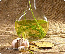 Extra virgin olive oil prevents abnormal brain tangle formation to prevent Alzheimer's disease | Natural Wellness news | Scoop.it
