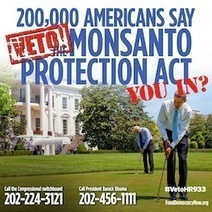 Tell President Obama to veto the Monsanto Protection Act! | News in english | Scoop.it