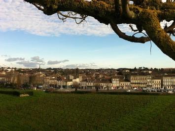 Les vins de Blaye : remarquables, évidemment ! | Miss Vicky Wine | Le meilleur des blogs sur le vin - Un community manager visite le monde du vin. www.jacques-tang.fr | Scoop.it