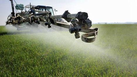 Allons-nous enfin réussir à réduire les pesticides dans l'agriculture ? - France inter | Les colocs du jardin | Scoop.it