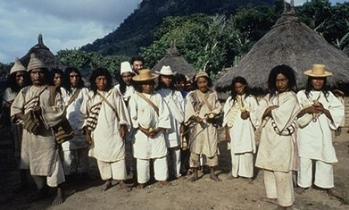What Colombia's Kogi people can teach us about the environment | ecology | Scoop.it