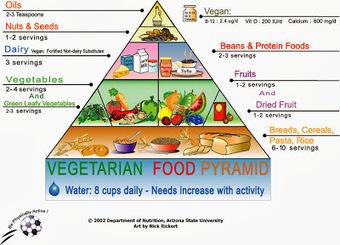 Pro-Animals: El vegetarianisme: El meu estil de vida | Notícies d'actualitat | Scoop.it