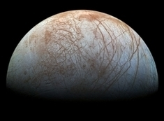 Earthly Extremophiles Prompt Speculation about Alien Life | Europa News | Scoop.it