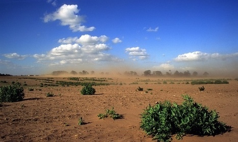 Earth has lost a third of arable land in past 40 years, scientists say | Sustainable Futures | Scoop.it