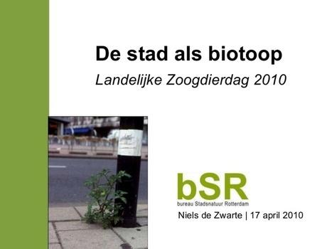 De stad als biotoop | Stad@Natuur | Scoop.it
