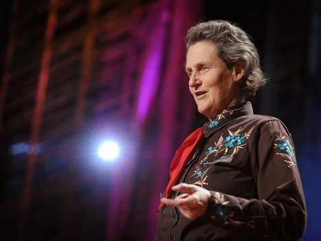 Temple Grandin: El mundo necesita todo tipo de mentes | Aprendizajes 2.0 | Scoop.it