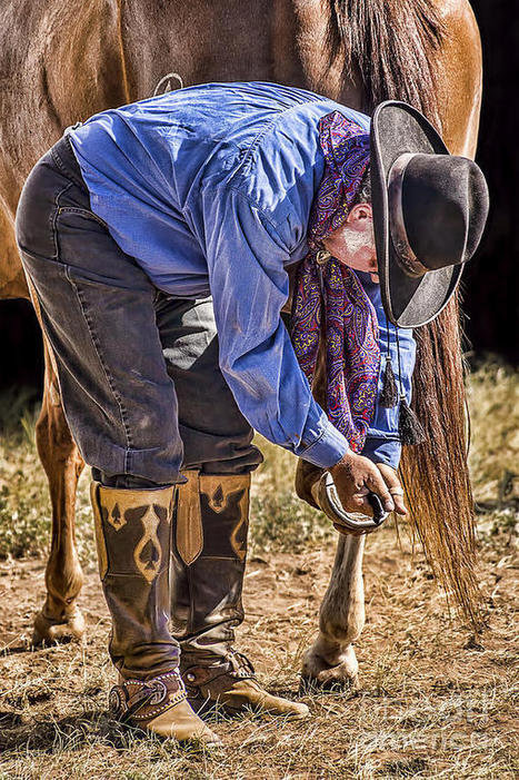 The Farrier by Priscilla Burgers | Western Lifestyle | Scoop.it