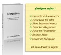 Référencement naturel - Un guide complet gratuit | Community Manager #CM #Aquitaine | Scoop.it