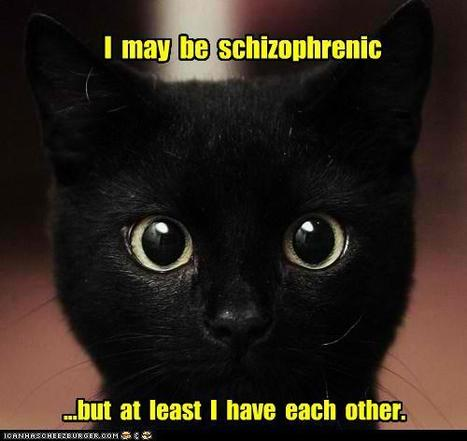 I  may  be schizophrenic | meme, lol & existensialism | Scoop.it