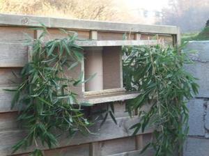 [TUTO DIY] Construire une petite maison pour les oiseaux | Best of coin des bricoleurs | Scoop.it