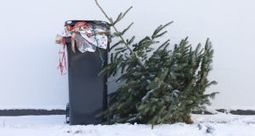Waste not...have yourself an eco little Christmas | Recycled News! - Curated by CleanRiver Recycling Solutions | Scoop.it