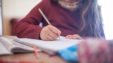Argumentos de los padres a favor de los deberes y de los exámenes | Educacion, ecologia y TIC | Scoop.it