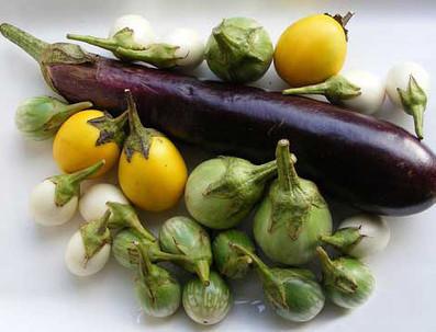 Aubergines Thaï | cuisine végétale et bio au quotidien | Scoop.it
