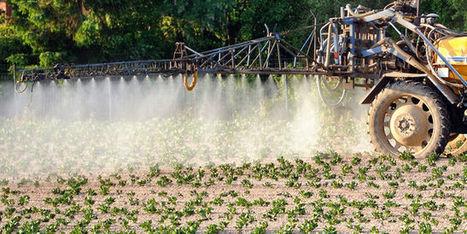Pesticides, nutrition: surtout, ne pas savoir - Le Monde | Le Fil @gricole | Scoop.it