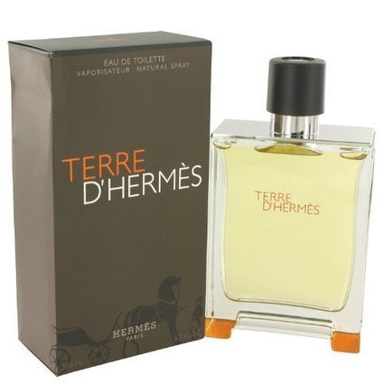 Terre D'Hermes by Hermes Eau De Toilette Spray 6.7 oz for Men | The Perfume Shop | Scoop.it