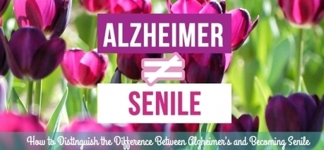 How to Distinguish the Difference Between Alzheimer's and Becoming Senile | Ressources de soins aux Ainés Ville de Québec | Mes ressources personnelles | Scoop.it