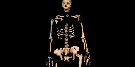 Oudste DNA van mensachtige in kaart gebracht - Scientias.nl | 2014 | Scoop.it