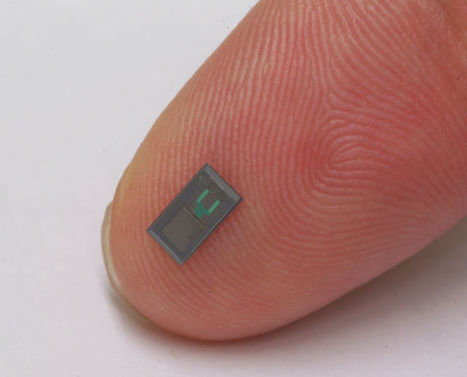 In a brain, dissolvable electronics monitor health and then vanish | metrobodilypassages | Scoop.it