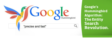Google's Hummingbird Algorithm: the Entity Search Revolution | Internet (e anche un po' di tecnologia) | Scoop.it