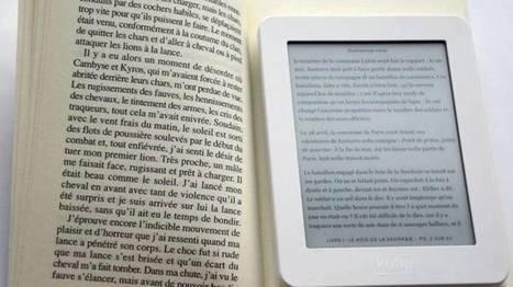 La lecture numérique reste un phénomène confidentiel et le marché des liseuses stagne... | librairies et bibliothèques | Scoop.it