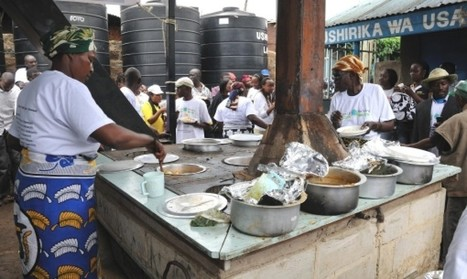 Garbage-fed community cooker cuts wood use, energy costs | AREA News Digest | Scoop.it