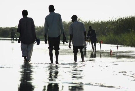 Insurance could cut climate risks, ease 'loss and damage' - experts   Humanitarian emergencies   Scoop.it