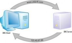 Elegir el mejor servidor DNS para mejorar la velocidad en internet | Emprendedor en la Red | Scoop.it