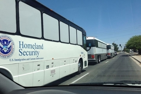 DHS caught busing in illegal Somalis from Mexican border | THE MEGAPHONE | Scoop.it