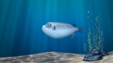 'Fugu', pequeña pieza de animación en 3D de Arthur Philippe — LA ... | Render farm studios | Scoop.it