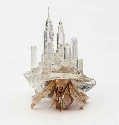 architecturally influenced hermit crab habitats by aki inomata - designboom | architecture & design magazine | Killer Design | Scoop.it