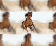 @Horse_Ebooks Is the Most Successful Piece of Cyber Fiction, Ever | Ebook and Publishing | Scoop.it