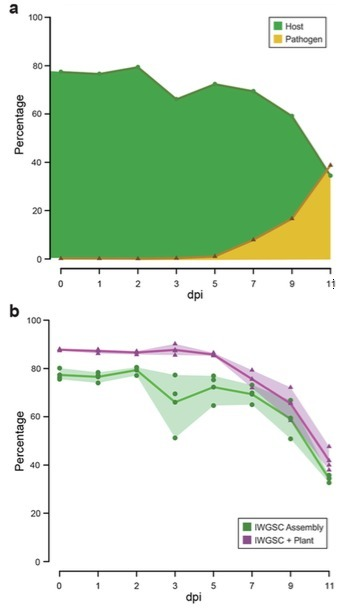 The host-pathogen interaction between wheat and yellow rust induces temporally coordinated waves of gene expression | Plant pathogenic fungi | Scoop.it