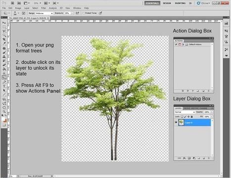 NPR Trees in Photoshop   srhfdjgkk   Scoop.it