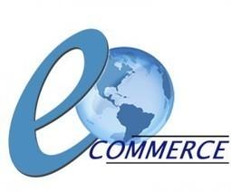E-Commerce: un Plus pour la Force de Vente | WebZine E-Commerce &  E-Marketing - Alexandre Kuhn | Scoop.it