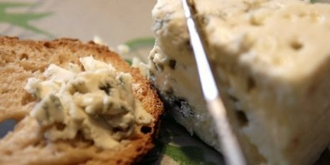 Millau : pause roquefort sur l'aire du viaduc | The Voice of Cheese | Scoop.it