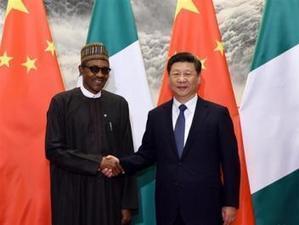 La Chine offre $50 millions pour l'établissement de 50 fermes au Nigeria | Questions de développement ... | Scoop.it