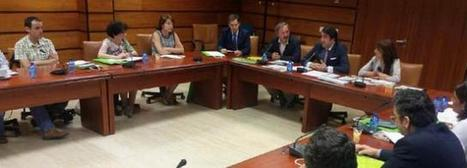 La Junta de Castilla y León pone en valor el trabajo de PEFC en la conservación de los montes | Cesefor | Actualidad forestal cerca de ti | Scoop.it