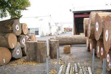 L'industrie fait feu de tout bois   Ma Maison Bois   Scoop.it