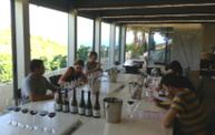 Tast d'altura | Wine & Wineries in Catalonia | Scoop.it