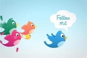 American Express invente l'achat en ligne sur Twitter | Communication et réseaux | Scoop.it