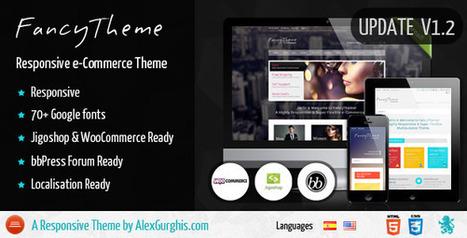 FancyTheme - e-Commerce WordPress Theme (eCommerce) Download | eCommerce Templates Download | Scoop.it