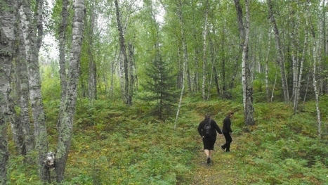 'Mood Walks' help young patients cope with mental health issues | Wilderness Therapy | Scoop.it