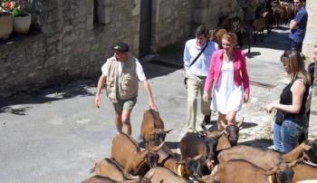 Rocamadour. Le plus grand marché de fromage AOC du Sud Ouest | The Voice of Cheese | Scoop.it