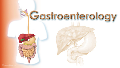 Best Gastroenterology hospitals in India   Best Hospital for Heart Treatment in Chennai   Scoop.it