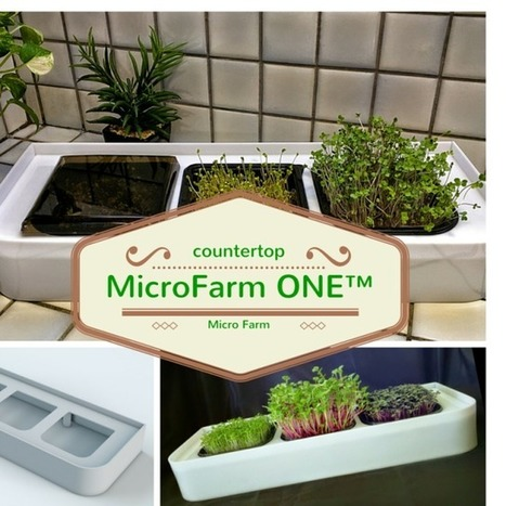 Countertop Micro Farm ONE | Vertical Farm - Food Factory | Scoop.it