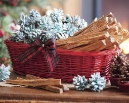 The Gift of Giving Preparedness and Self Sufficiency | Prepping | Scoop.it