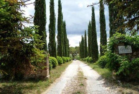 A Bagnaia, on partage tout, la propriété a disparu, et ça marche | Seniors | Scoop.it